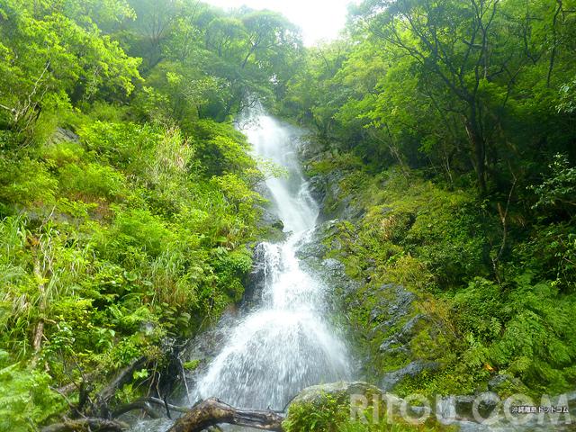車で行ける秘境の滝!奄美大島「フナンギョの滝」でマイナスイオン満喫