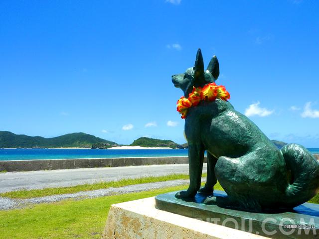 海を渡る一途な恋!映画「マリリンに逢いたい」は沖縄の実話!犬たちの恋物語の舞台・阿嘉島と座間味島へ