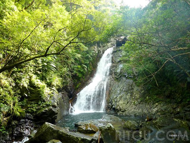 梅雨でも楽しい沖縄・比地大滝!普段着で満喫できる熱帯雨林で滝を目指そう!