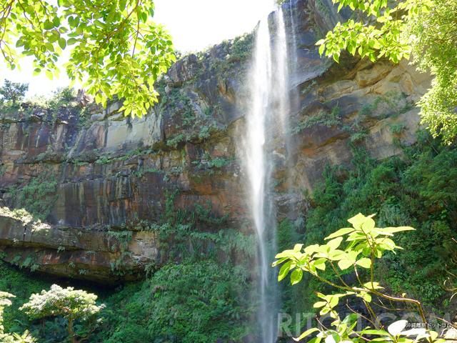 沖縄No1の水落を誇るピナイサーラの滝!西表島で満足度もNo1