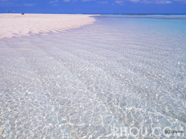 与論島・百合ヶ浜は冬NG!リアルなおすすめ時期を月ごとに紹介