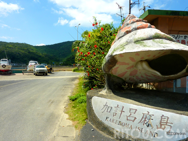 テルマエロマエ?カケロマ島!不思議な名前の奄美の離島で古き良き時代へタイムスリップ