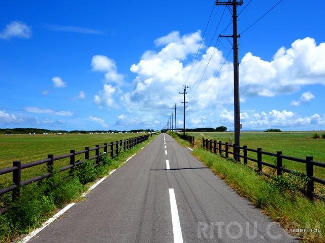 南国なのに北海道?のどかな牧草広がる沖縄・黒島で心の洗濯をしよう!