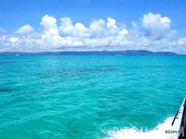 島に着いたらもう遅い!沖縄・黒島の見所は島着5分前!!