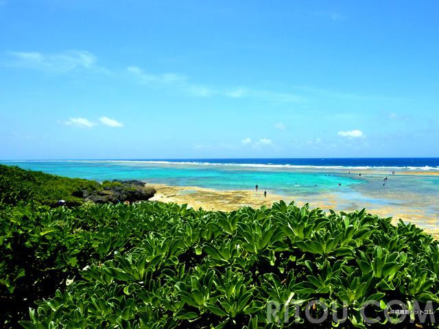 全長450mの巨大プール出現!沖縄・黒島「仲本海岸」は干潮時を狙え!!