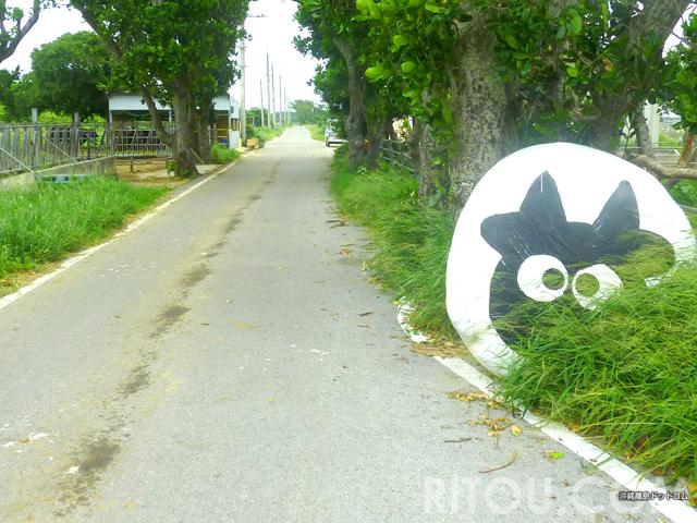 隠れ牛を探せ!沖縄「黒島」は牛のテーマパーク!牛まつりも開催