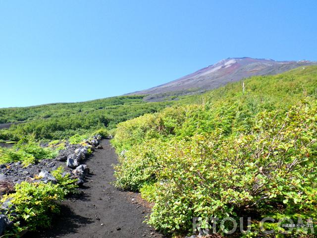 富士山登山を本気で満足したいなら「須走ルート」一度登れば病みつき